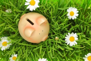 Piggy bank on green grass with flowers background