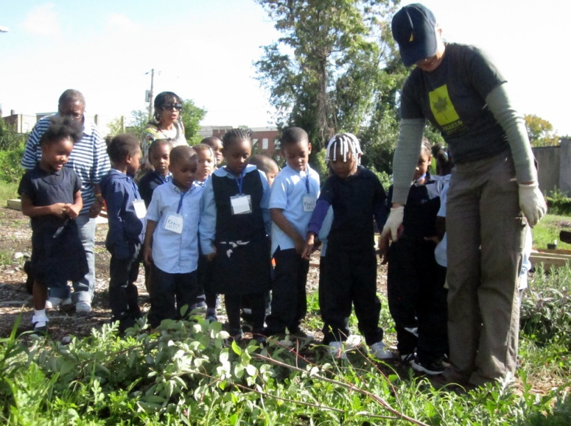 school-garden-image
